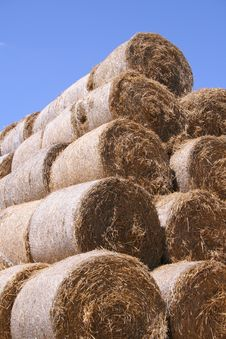 Free Straw Bales Royalty Free Stock Images - 1035649