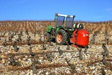 Tractor In Vineyard Stock Image