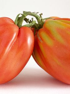 Free Beef Tomatoes Close-up Stock Image - 1037241
