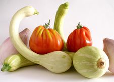 Trumpet Zucchini With Beef Tomato And Sweet Onions 2 Stock Photography