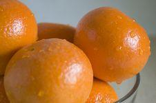 Free Mandarin Orange Royalty Free Stock Image - 1038216