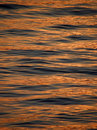 Free Reflection, Ripple Of Light On Sea Wave Stock Photo - 10301160