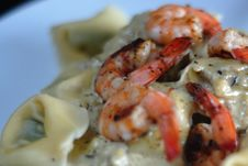 Free Tortellini With Shrimp Stock Images - 10300764