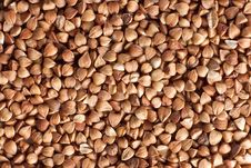 Free Buckwheat Groats Royalty Free Stock Image - 10301096
