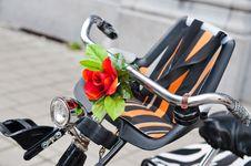 Free Bike Handlebar Stock Photo - 10302140