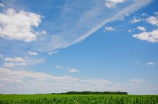 Free Clouds Above The Field Stock Images - 10303244