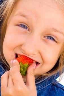 Free Strawberry Royalty Free Stock Photos - 10303898