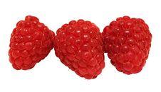 Free Raspberry Stock Photo - 10306350