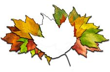 Free Maple Leaf Bunch Royalty Free Stock Photos - 10308728