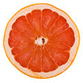 Free Fresh Grapefruit Slices Stock Image - 10316301