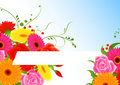 Free Flower Background Stock Image - 10317571