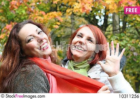 Free Fun Royalty Free Stock Image - 10311256