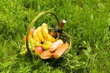 Free Basket Picnic Stock Image - 10311341