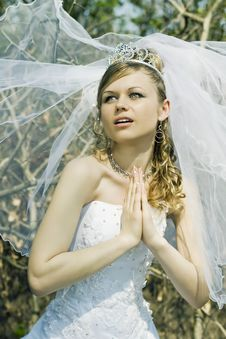 Free Praying Bride Stock Photos - 10314093