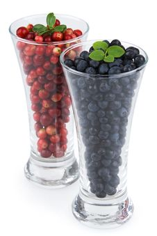 Free Bilberries And Cranberries Royalty Free Stock Photo - 10314325