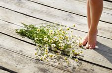 Free Daisies And A Woman Foot Royalty Free Stock Photography - 10315757