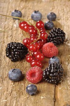 Free Berries Stock Photo - 10316100