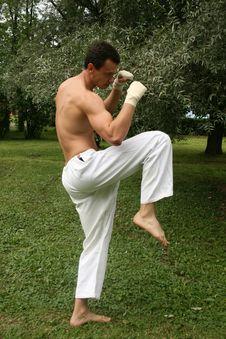 Free Fighting Man Stock Photos - 10316973