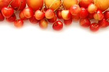 Free Cherry And Apricot Border Isolated White Stock Photos - 10317473
