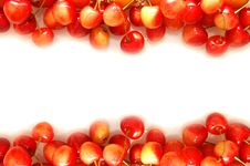 Free Cherry And Apricot Border Isolated White Stock Image - 10317491