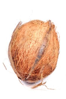 Half Shaved Coconut Stock Images