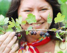 Free Woman Picking Berries Stock Photo - 10318670