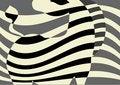 Free Zebra Stock Photo - 10324730