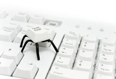 Free Spider Button Royalty Free Stock Image - 10320216