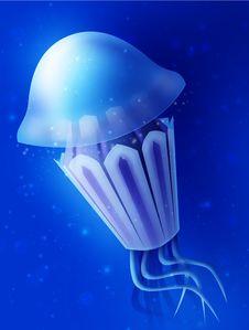 Sea Jelly Blue Ufo Deep Sea Ocean Underwater World Stock Photography