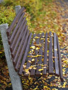 Free Park In Autumn Royalty Free Stock Image - 10322026