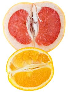 Free Grapefruit And Orange Stock Photography - 10325842