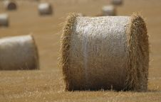 Free Hay Bales Stock Images - 10326364
