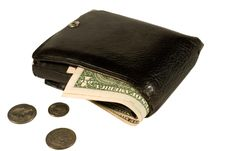 Free Leather Wallet With Dollars Stock Photos - 10327153