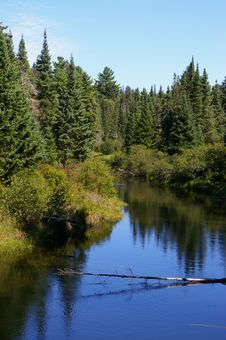 Free Algonquin Provincial Park Stock Images - 10328464