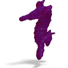 Free Fantasy Seahorse Royalty Free Stock Photos - 10328658