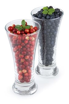 Cranberries And Bilberries Stock Photo