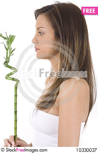 Free Young Woman On White Holding Green Bamboo. Royalty Free Stock Photography - 10330037