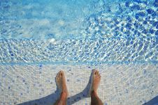 Free Swim Royalty Free Stock Image - 10331106