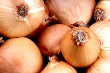 Free Onions Stock Photography - 10332392