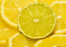 Lime Cut Between Lemon Segments Royalty Free Stock Photography