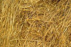 Free Hay Stock Photography - 10334182