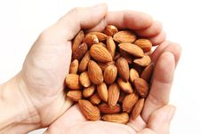 Free Almond Stock Photos - 10338813
