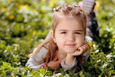 Free Child, Human Hair Color, Grass, Beauty Stock Image - 103340511
