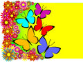 Free Card With Butterflies And Colours, A Template For Royalty Free Stock Photography - 10342227