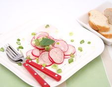 Free Fresh Salad Royalty Free Stock Photography - 10344977