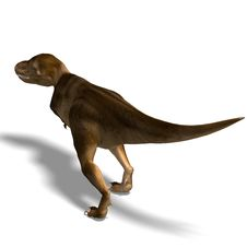 Free Tyrannosaurus Rex Stock Photos - 10348103