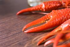 Free Claws Of A Crayfish Royalty Free Stock Images - 10349549