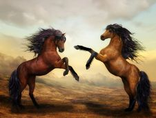 Free Horse, Mane, Mustang Horse, Stallion Stock Image - 103418361