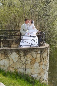 The Groom And The Bride On Lake. Royalty Free Stock Photography
