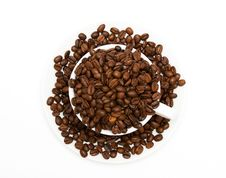 Free Mug Filled With Coffee Beans Royalty Free Stock Photography - 10353007